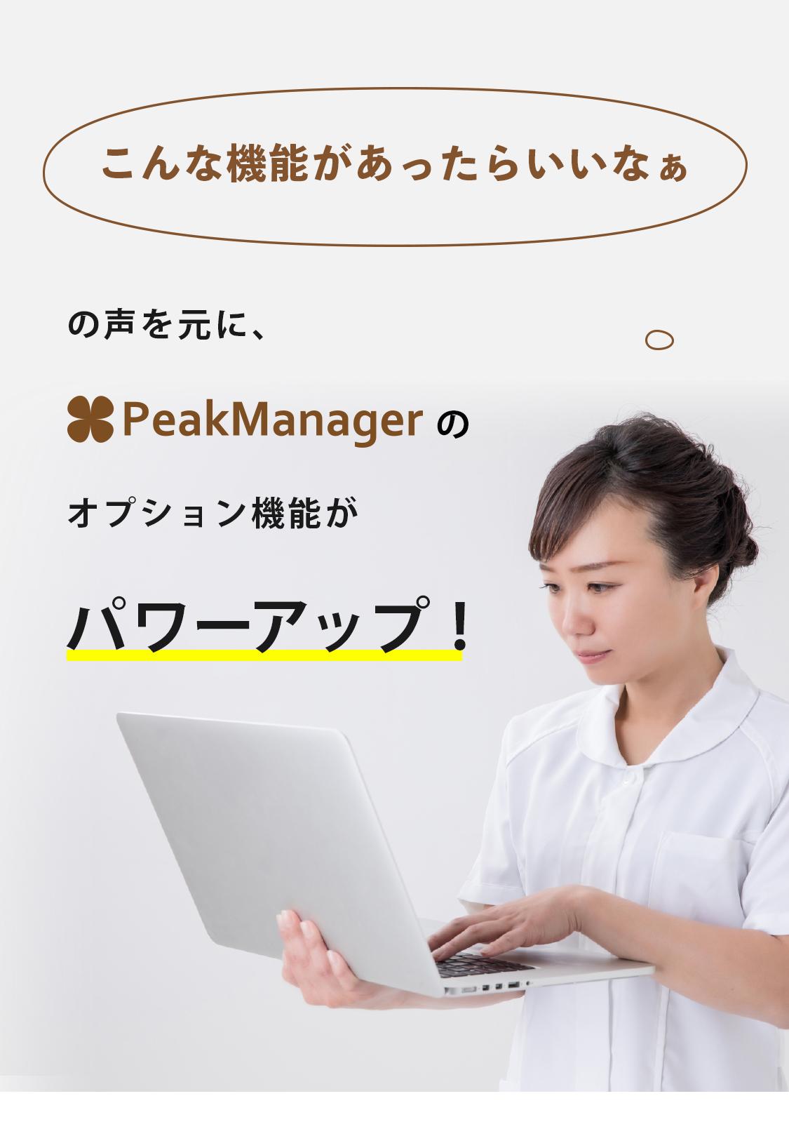 マネージャー ピーク